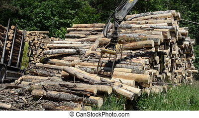 crane load wood logs - Two crane with metal claws loading...