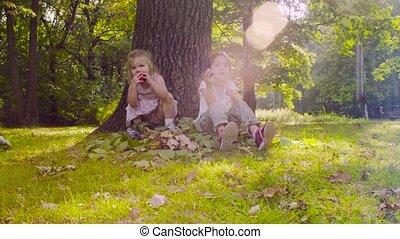 Three girls sitting in the park and eating garnet - Crane...