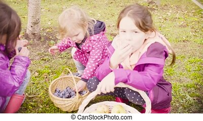 Three girls sitting on the grass and eating plums - Crane...