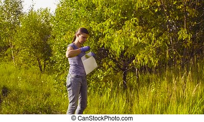 Woman ecologist getting samples of foliage. - Crane shot....