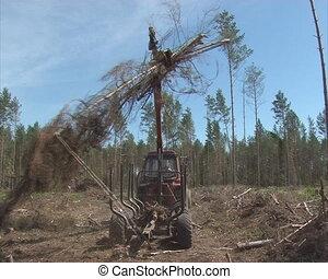 crane trailer load trees