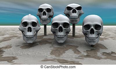 crani, fila