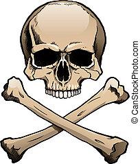 cranio, colorato, umano, crossbones