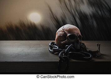 cranio, con, uno, pieno, moon.