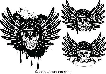 cranio, in, casco, e, ali