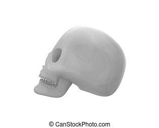 cranio, interpretazione, isolato, fondo., bianco, 3d