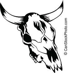 cranio, toro