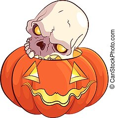 cranio, zucca