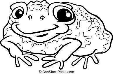 Amphibie crapaud animal croquis crapaud image main color vecteur dessin - Dessin crapaud ...