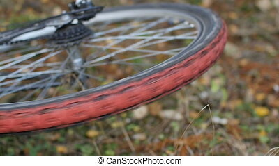 crash, Wheel bike rotates
