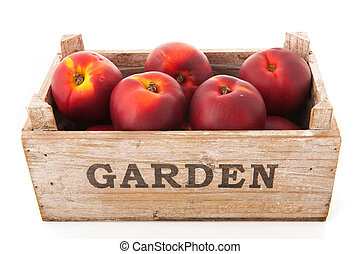 Crate nectarines - Wooden garden crate nectarines isolated...