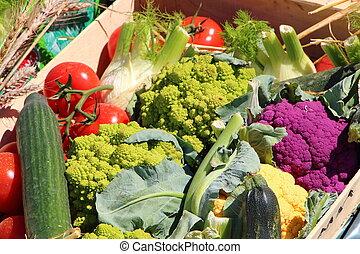 Crate of varied vegetables