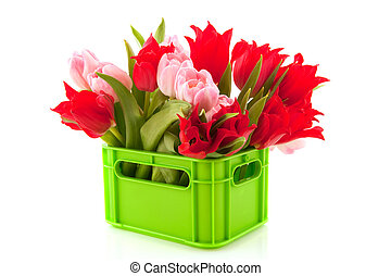 Crate with colorful tulips