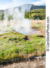 crater in Haukadalur geyser valley in Iceland