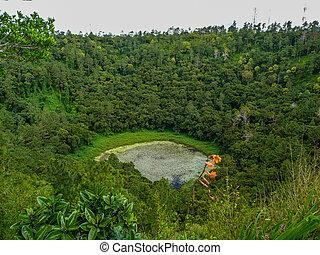 crater of volcano in Mauritius