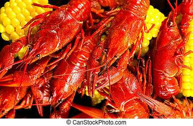Crayfish. Creole style crawfish boil serving with corn and ...