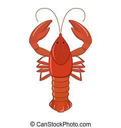 Crayfish on white background