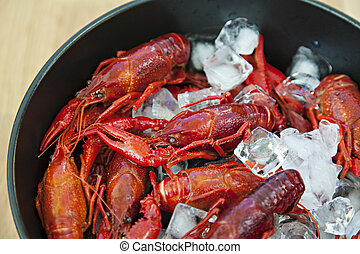 crayfish, schüssel