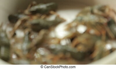 Crayfish - A lot of crayfish, crawling in the pan. The...