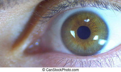 Crazy and Fear Look of Human Eye