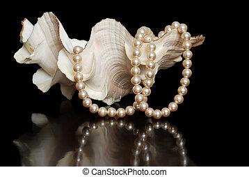 cream colored pearls in a sea shell - closeup cream colored...