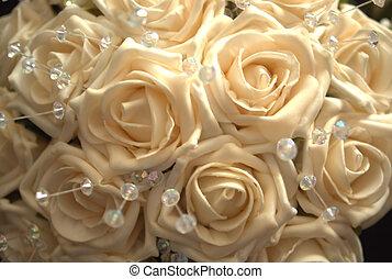 cream colored roses - cream rose background