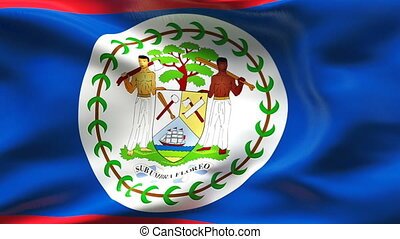 Creased BELIZE flag in wind