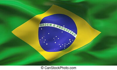 Creased BRASIL flag in wind - Highly detailed flag with...