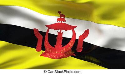 Creased BRUNEI flag in wind