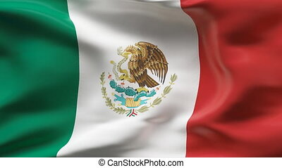Creased MEXICO  satin flag in wind