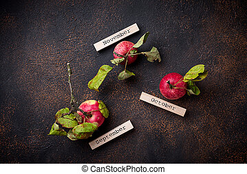 Creative autumn background with apples