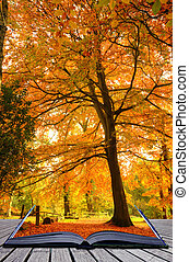 Creative concept idea of Beautiful autumn fall forest scene with vibrant colors and excellent detail coming out of pages in magical book