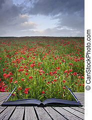 Creative concept idea of poppy field landscape image coming out of pages in magical book