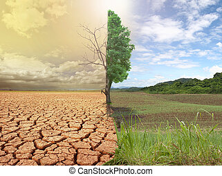 global warming. - creative concept image compare of global...