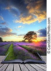 Creative concept image of beautiful image of stunning sunset...