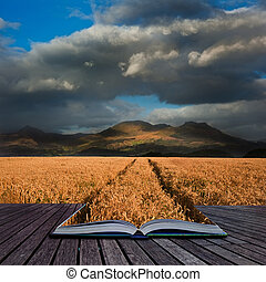 Creative concept image of landscape of mountain range with wheat field in foreground in pages of book