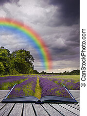 Creative concept image of lavender fields landscape coming out of pages in magical book