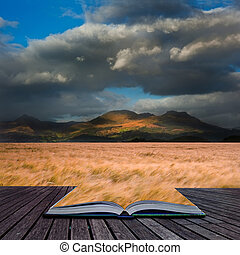 Creative concept image of Mountain range landscape with field of wheat in pages of book