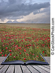 Creative concept image of poppy field landsape coming out of pages in magical book