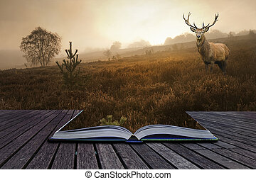 Creative concept image of red deer stag in foggy landscape...