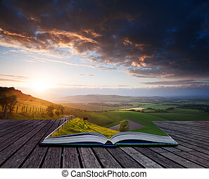 Creative concept image of Summer landscape in pages of book...