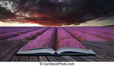 Creative concept pages of book Beautiful image of lavender field Summer sunset landscape under red stormy sky