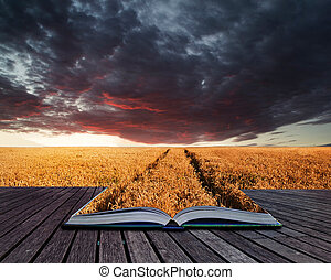 Creative concept pages of book Beautiful image of wheatfield...
