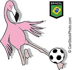 brazil flamingo soccer player