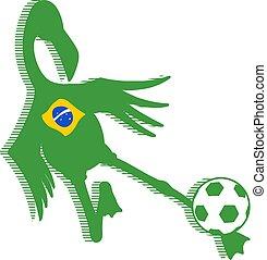 Brazil soccer flamingo