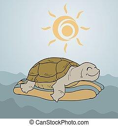 happy turtle in ocean