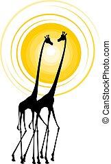 jungle giraffes draw - Creative design of jungle giraffes ...