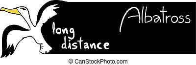 Creative design of long distance message