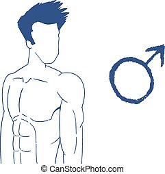 male body draw