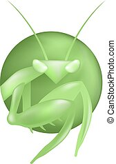 mantis green color illustration - Creative design of mantis...